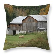Blonde Horse Throw Pillow
