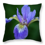 Blood Iris Throw Pillow