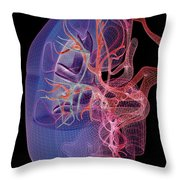 Blood Supply Of The Kidneys Throw Pillow