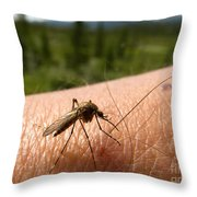 Blood Thirsty Mosquito On Human Arm Throw Pillow