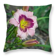 Blood Throated Lily 1 Throw Pillow