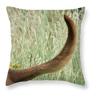 Bloodhound Tail Throw Pillow