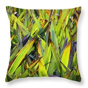 Bloodroot Abstract Throw Pillow