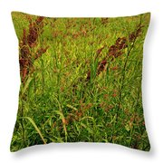 Bloody Battle Of New Orleans 2 Throw Pillow