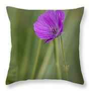 Bloody Cranesbill Flower Throw Pillow
