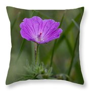 Bloody Geranium Wild Flower Throw Pillow