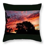 Bloody Sunset Over Palm Desert Throw Pillow