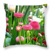 Bloom Pink English Daisies Throw Pillow