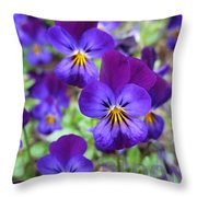 Bloom Purple Violets Throw Pillow