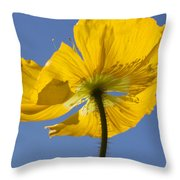 Bloom Time Throw Pillow by Heidi Smith