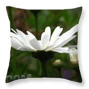Bloom White Daisy Throw Pillow