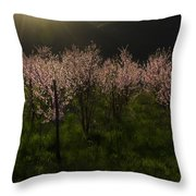 Blooming Almond Trees Throw Pillow