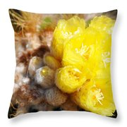 Blooming Barrel Cactus Throw Pillow