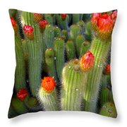 Blooming Cacti Throw Pillow
