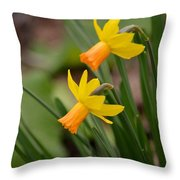 Blooming Daffodils Throw Pillow