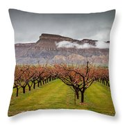 Blooming Orchards 2 Throw Pillow