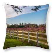 Blooming Peach Tree's At Boone Hall Throw Pillow