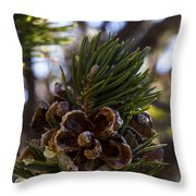 Blooming Pinecone Throw Pillow