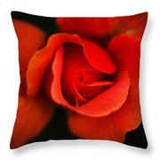 Blooming Red Rose Throw Pillow