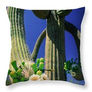 Blooming Saguaro Throw Pillow