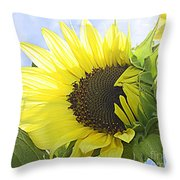 Blooming Sunflower Throw Pillow