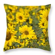 Blooming Sunflower Throw Pillow