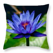 Blooming Water Lily Throw Pillow