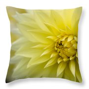 Blooming Yellow Petals Throw Pillow