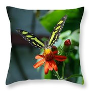 Blooms And Butterfly1 Throw Pillow