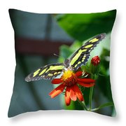 Blooms And Butterfly2 Throw Pillow