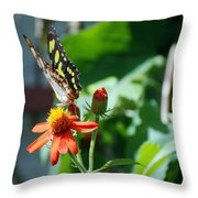 Blooms And Butterfly4 Throw Pillow