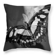 Blooms And Butterfly5 Throw Pillow