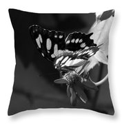 Blooms And Butterfly7 Throw Pillow