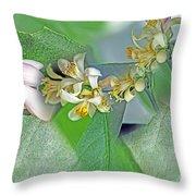 Blooms Of Lemon Tree Throw Pillow