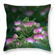 Blooms Of The Mimosa Tree Throw Pillow