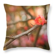 Blossom Amidst The Thorns Throw Pillow