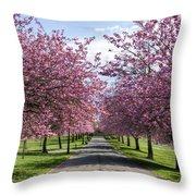 Blossom Lined Walk Throw Pillow