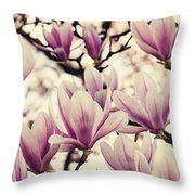 Blossoming Of Magnolia Flowers In Spring Time Throw Pillow