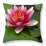 Blossoming Waterlily Throw Pillow