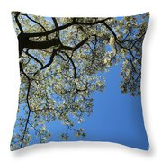 Blossoming White Magnolia Tree Against Blue Sky Throw Pillow