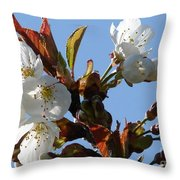 Blossoms 2 Throw Pillow