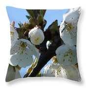 Blossoms 3 Throw Pillow