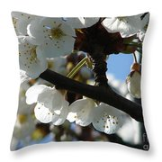 Blossoms 4 Throw Pillow