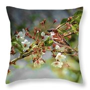 Blossoms And Sparrow Throw Pillow