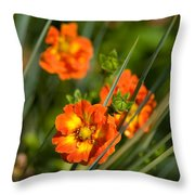 Blossoms In The Reeds Throw Pillow