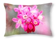 Blossoms Of Spring - April 2014 Throw Pillow