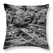 Blow Down Glacier National Park Bw Throw Pillow