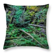 Blow Down Glacier National Park Painted Throw Pillow