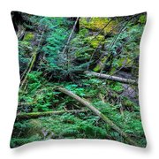 Blow Down Glacier National Park  Throw Pillow