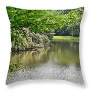 Blowing Rock Lake Throw Pillow